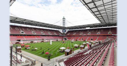 Bild: Klein, aber fein - Exklusives Grill-Event von REWE im Stadion des 1. FC Köln